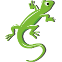 Picture of reptile for boarding
